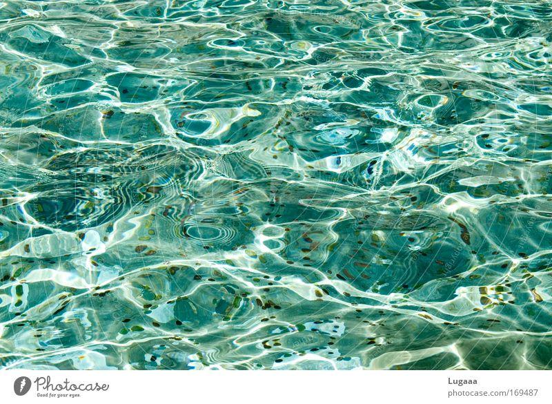 Summer Happy Lake Waves Water Wet Swimming pool Under