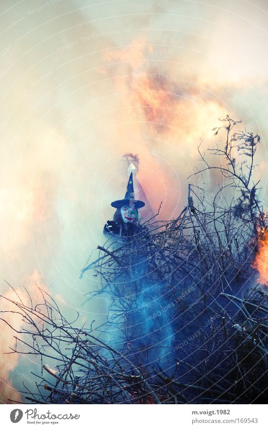 Many innocent witches had to die again. Colour photo Twilight 1 Human being Elements Fire Branch Wood Threat Hideous Rebellious Bizarre Protest Tradition