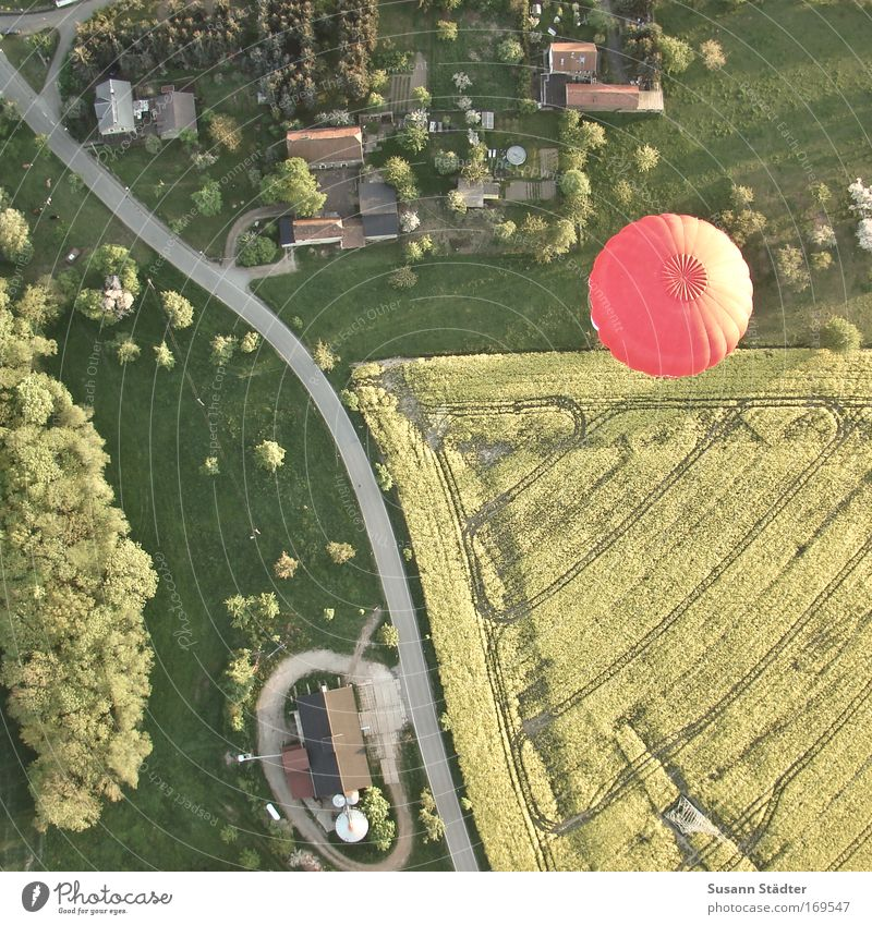 Bird's-eye view Tree Plant Summer Joy Vacation & Travel House (Residential Structure) Aerial photograph Far-off places Meadow Above Grass Freedom Landscape Air Field