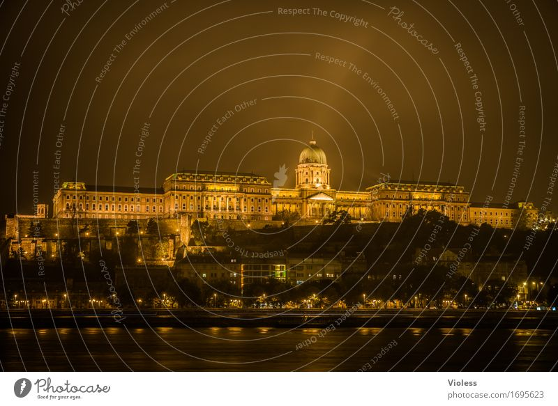 castle palace Old town Manmade structures Architecture Tourist Attraction Landmark Monument Dark Gold Danube Budapest Lighting Night shot Long exposure