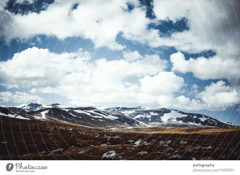 Sky Nature Vacation & Travel Plant Summer Landscape Clouds Far-off places Mountain Autumn Snow Freedom Tourism Earth Hiking Trip