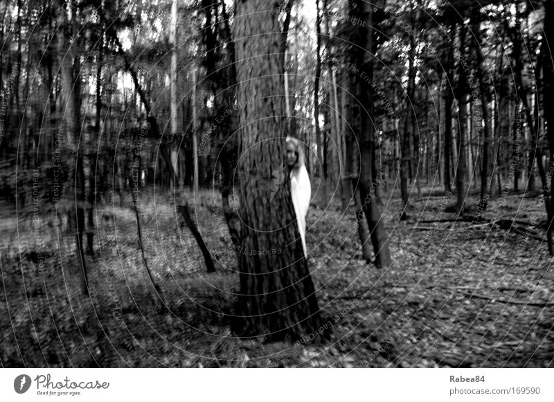 Human being Nature White Tree Black Forest Dark Feminine Gray Moody Fear Safety Protection Observe Curiosity Discover