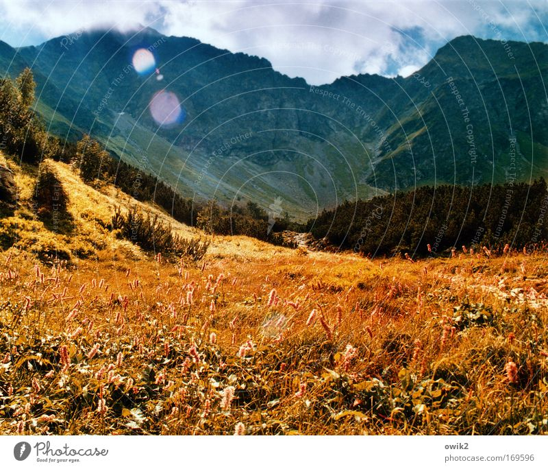 mountain meadow Colour photo Multicoloured Exterior shot Deserted Morning Light (Natural Phenomenon) Sunlight Sunbeam Back-light Vacation & Travel Tourism Trip