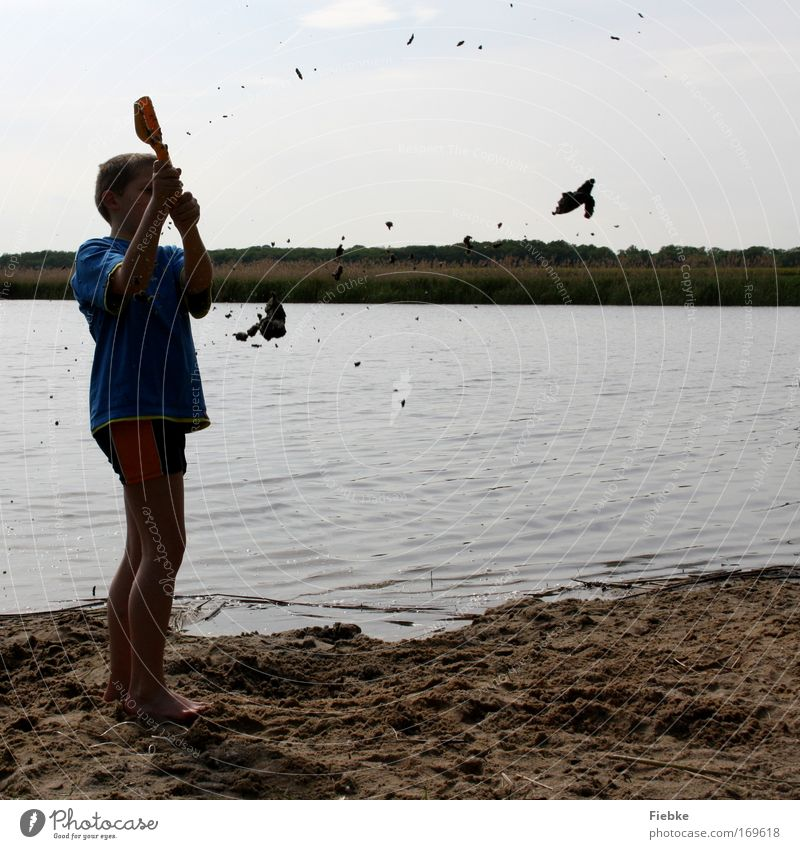 Child Nature Youth (Young adults) Summer Beach Joy Playing Boy (child) Movement Sand Happy Lake Infancy Contentment Leisure and hobbies Dirty