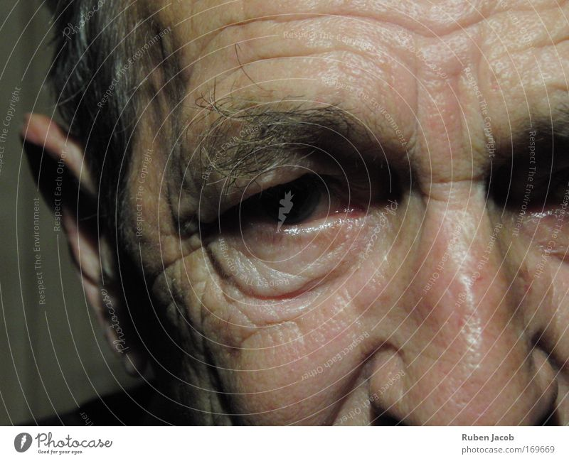 Faces can tell stories Colour photo Close-up Artificial light Shadow Portrait photograph Looking into the camera Forward Human being Masculine Male senior Man