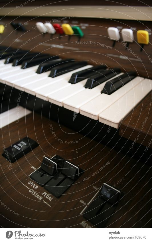 Joy Playing Wood Moody Leisure and hobbies Music Characters Technology Plastic Concert Stage Keyboard Switch Musical instrument Piano Entertainment