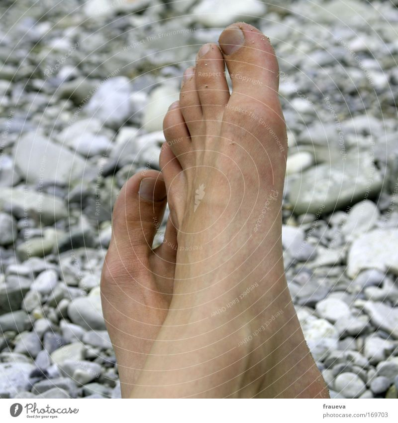 Human being Nature Vacation & Travel Sun Summer Ocean Beach Relaxation Gray Feet Skin Hiking Trip Tourism River To enjoy