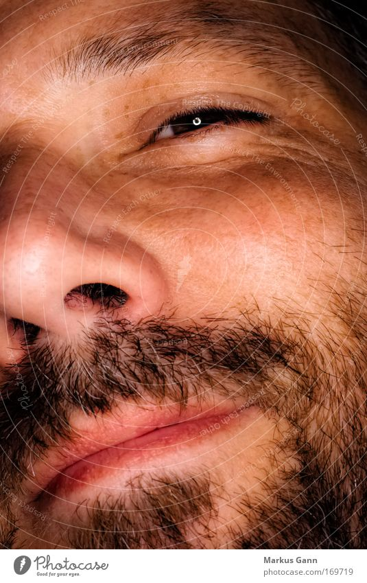 Man with beard Colour photo Macro (Extreme close-up) Flash photo Portrait photograph Looking into the camera Wink Face Human being Masculine Adults Head