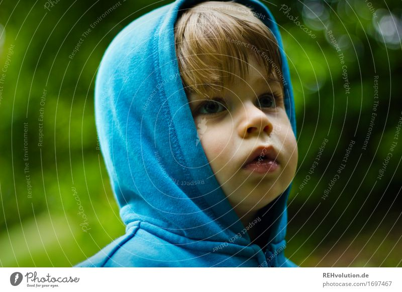 Human being Child Nature Blue Plant Face Environment Emotions Boy (child) Garden Moody Masculine Park Infancy Observe Adventure