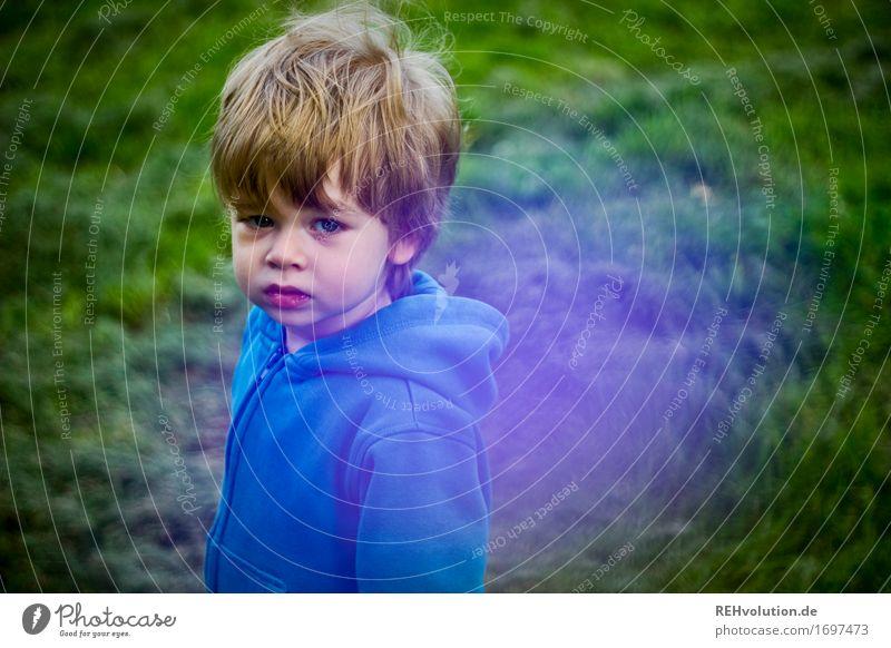 Human being Child Nature Blue Green Environment Sadness Emotions Meadow Grass Boy (child) Small Garden Masculine Park Fear