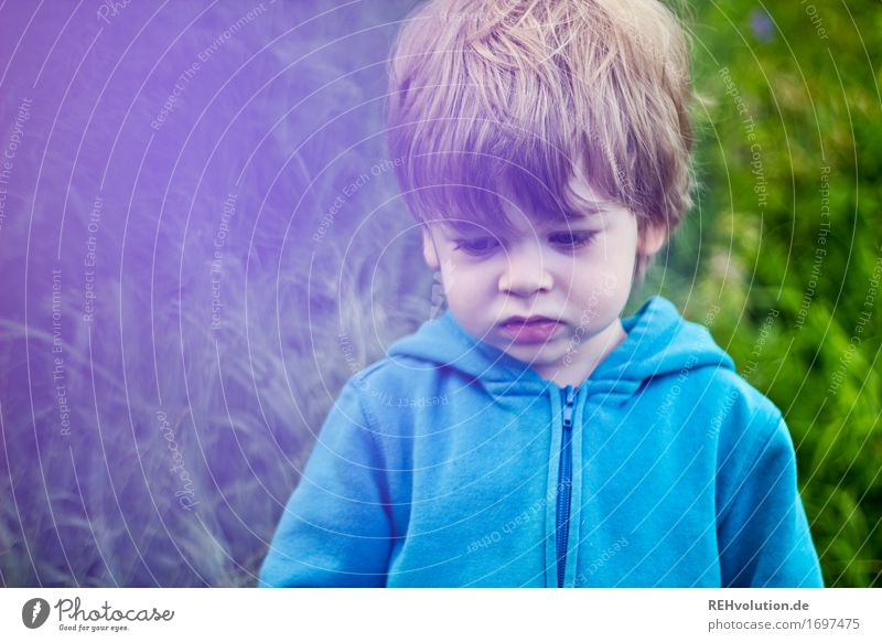 in a bad mood Human being Child Toddler Boy (child) 1 1 - 3 years Environment Nature Grass Meadow Sweater Hair and hairstyles Communicate Small Natural
