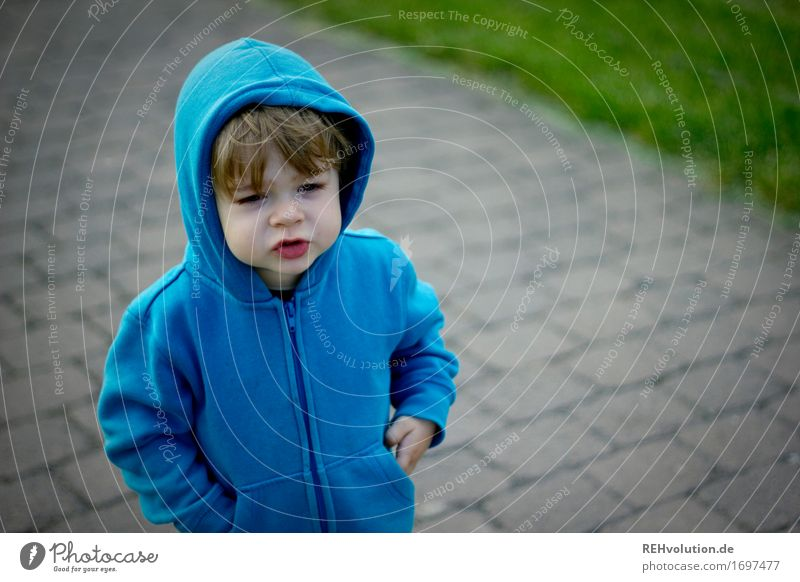 favorite sweater Human being Masculine Child Toddler Boy (child) Face 1 1 - 3 years Lanes & trails Sweater Hooded (clothing) Hooded sweater To talk Stand