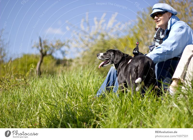 Human being Woman Dog Nature Vacation & Travel Plant Sun Landscape Relaxation Calm Animal Adults Environment Spring Meadow Feminine