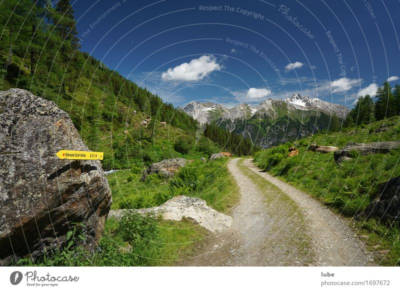 Nature Vacation & Travel Summer Landscape Mountain Environment Street Lanes & trails Rock Tourism Hiking Climate Beautiful weather Peak Hill Agriculture