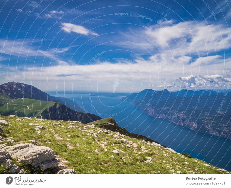 Till the Horizon Nature Landscape Water Sky Clouds Sunlight Summer Grass Mountain Altissimo di Nago Peak Lake Lake Garda Beautiful Contentment 2016 altissimo