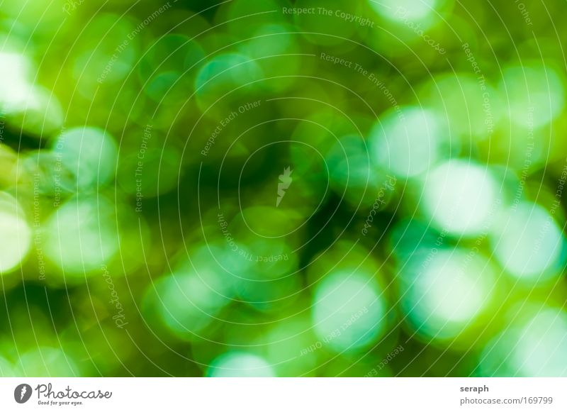 Green Spots Lighting Glittering Background picture Point Circular Festive Lighting Illuminating