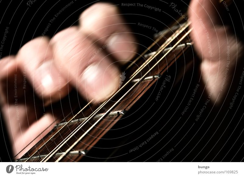 lapsus Colour photo Studio shot Detail Contrast Motion blur Shallow depth of field Leisure and hobbies Playing Music Man Adults Skin Hand Fingers Musician