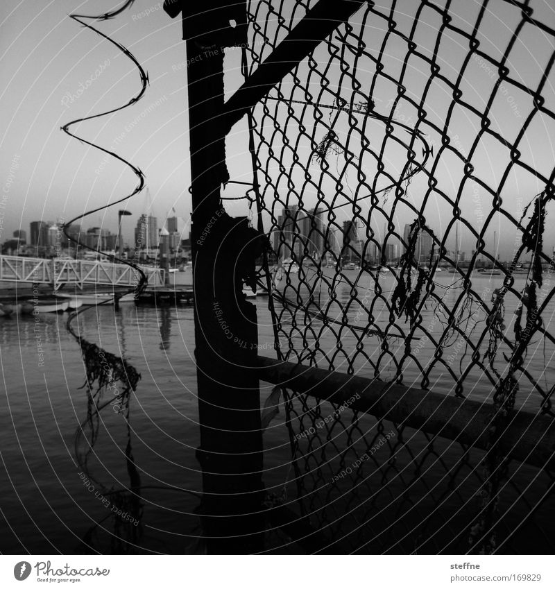 Moschendrohtßaun Black & white photo Exterior shot Twilight San Diego USA Port City Skyline Fence Wire netting fence Dark Broken Town