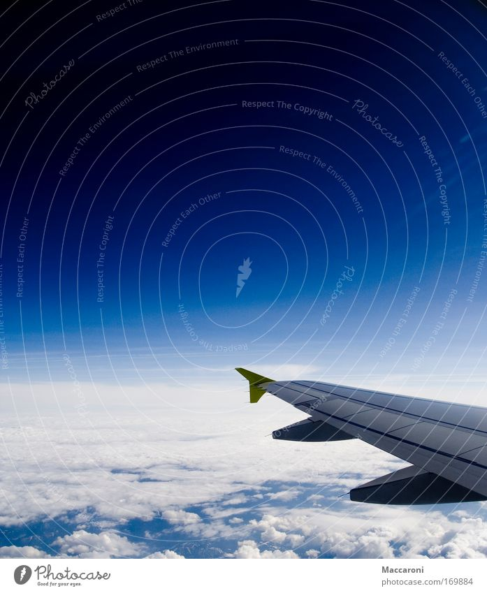 Sky Vacation & Travel Relaxation Clouds Far-off places Travel photography Freedom Flying Tourism Aviation Trip Airplane Wing Adventure Universe