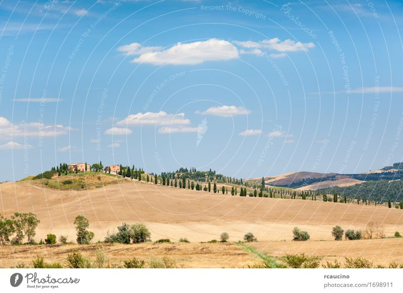 Country houses on top of a hill. Tuscan countryside Sky Nature Vacation & Travel Colour Summer Green Tree Landscape Relaxation House (Residential Structure) Warmth Yellow Meadow Brown Tourism Copy Space