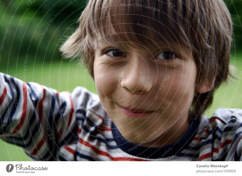 Innocent. Colour photo Exterior shot Day Shadow Contrast Shallow depth of field Looking into the camera Human being Masculine Child Boy (child)