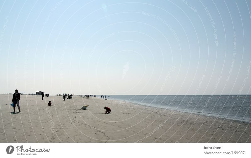 teetotalers Colour photo Exterior shot Copy Space top Sunlight Trip Freedom Beach Ocean Human being Cloudless sky Horizon Waves Coast North Sea Together