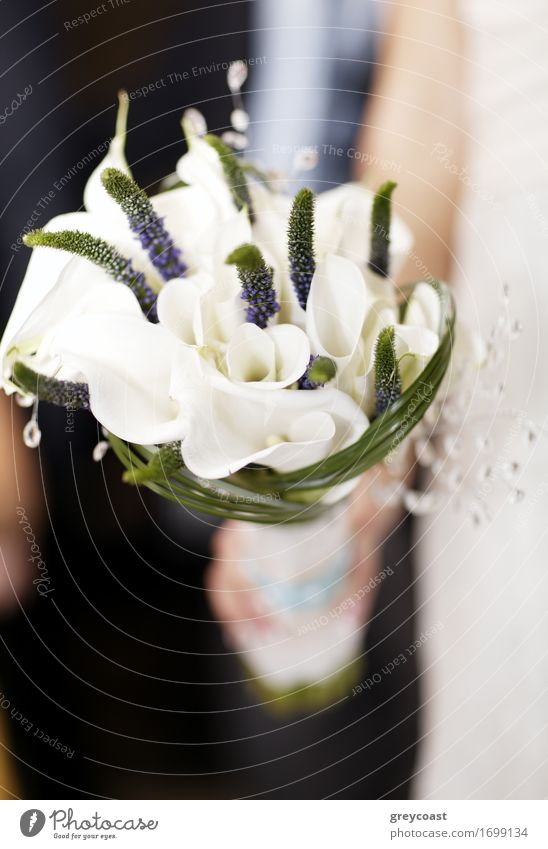 Wedding bouquet of white flowers Woman Nature Beautiful White Hand Flower Adults Blossom Love Happy Feasts & Celebrations Fresh Decoration Elegant Happiness
