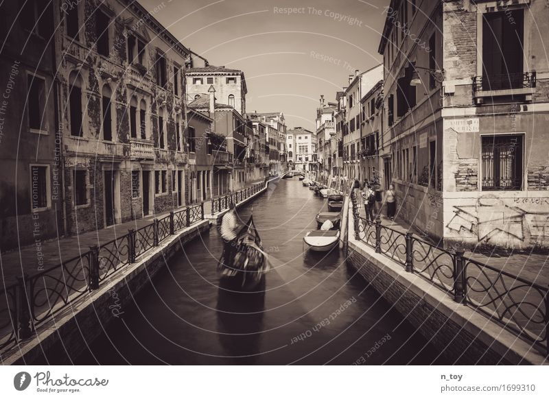 Afternoon in Venice Italy Europe Town Old town Driving Dark Emotions Moody Homesickness Wanderlust Adventure Idyll Senses Tradition Gondola (Boat) Gondolier