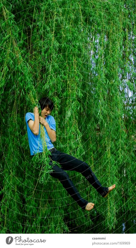 Tarzan in korean Playing Freedom Young man Youth (Young adults) Tree Willow tree Garden Forest Virgin forest Lakeside Pond Flying Hang To swing Scream Jump