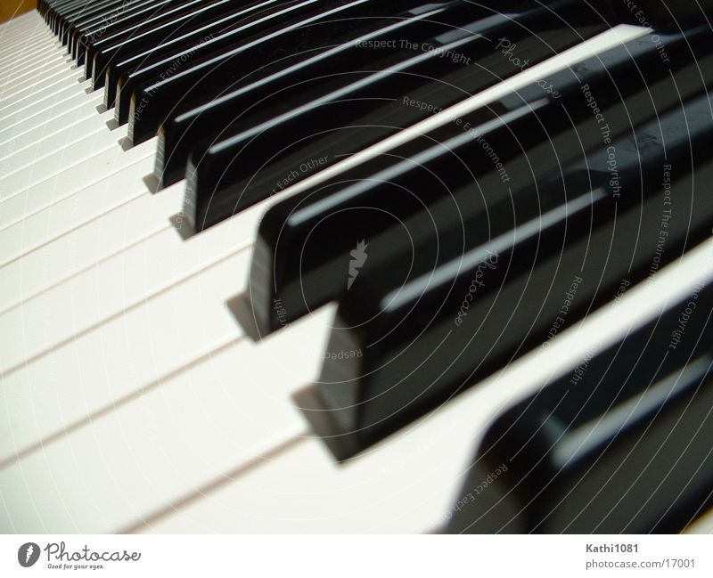 Music Perspective Leisure and hobbies Touch Piano Musical notes
