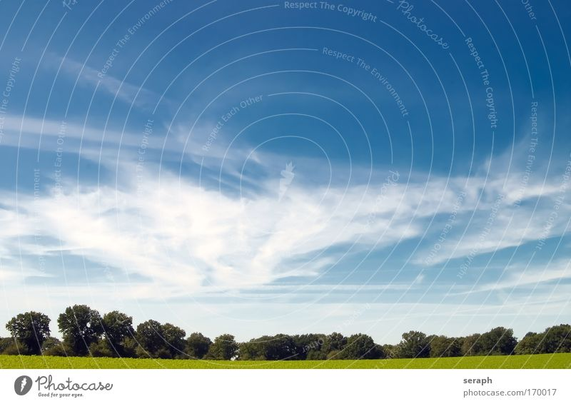 Pastureland Background picture Rural Meadow Field Sky Clouds Nature Landscape Freedom relaxation Peace distance vision Horizon Minimalistic easiness country