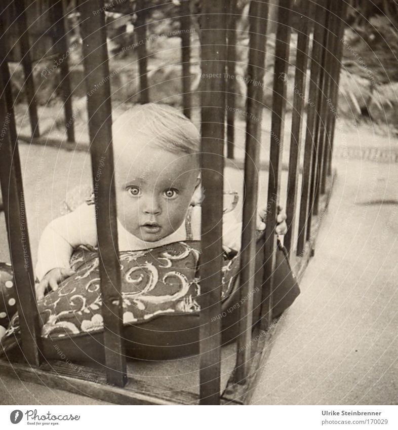 Toddler looks with big eyes through the bars of the playpen Black & white photo Exterior shot Day portrait Front view Looking into the camera Freedom Garden