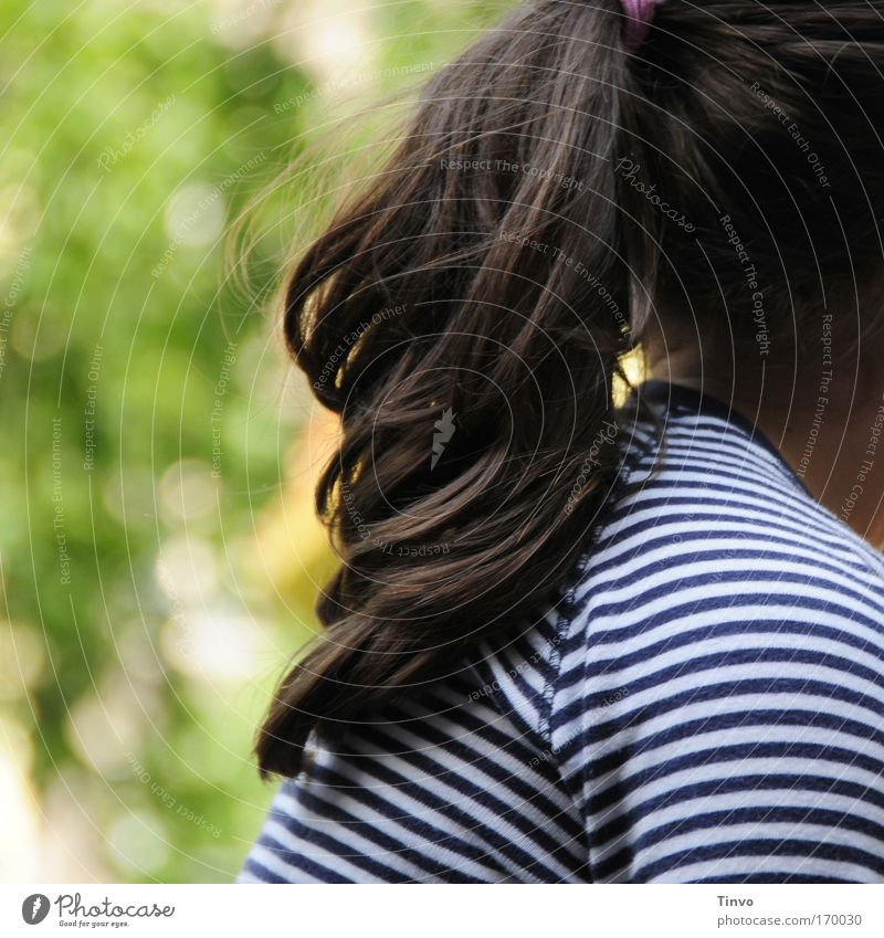 Girl in the park Colour photo Multicoloured Exterior shot Close-up Detail Copy Space left Day Hair and hairstyles Brunette Long-haired Braids Optimism Beautiful