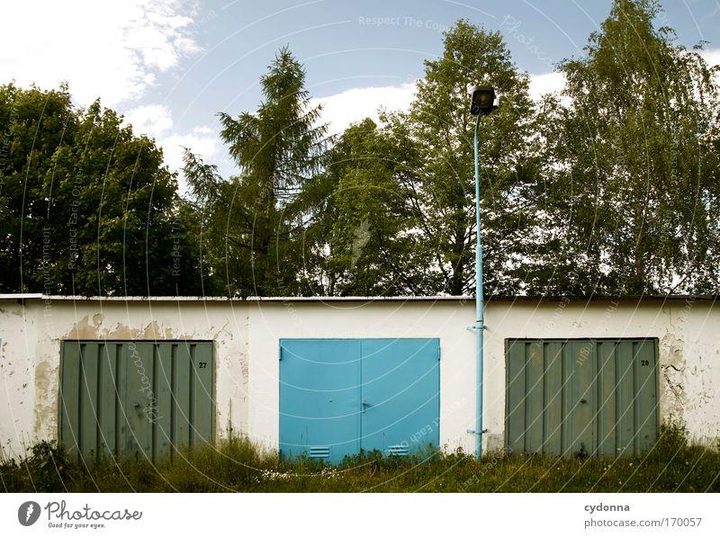 Nature Blue Summer Loneliness Colour Forest Life Emotions Dream Sadness Landscape Architecture Environment Perspective Arrangement Esthetic