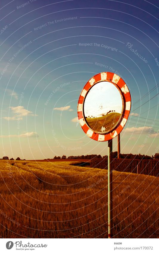 mirror image Environment Nature Landscape Sky Clouds Horizon Summer Climate Beautiful weather Agricultural crop Grain Field Transport Road sign Mirror