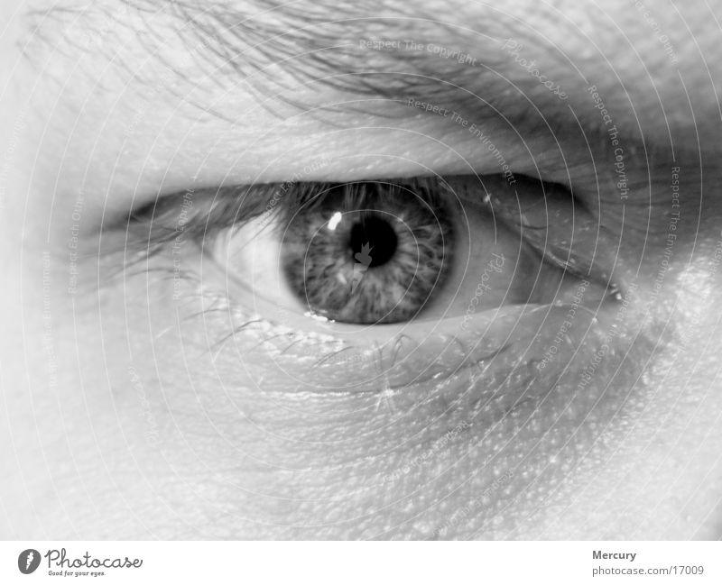 Man Eyes Soul Iris