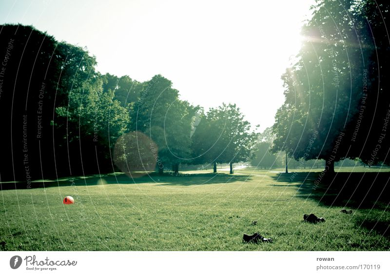 Tree Sun Summer Joy Calm Relaxation Meadow Playing Grass Park Footwear Leisure and hobbies Foot ball Ball Beautiful weather Competition