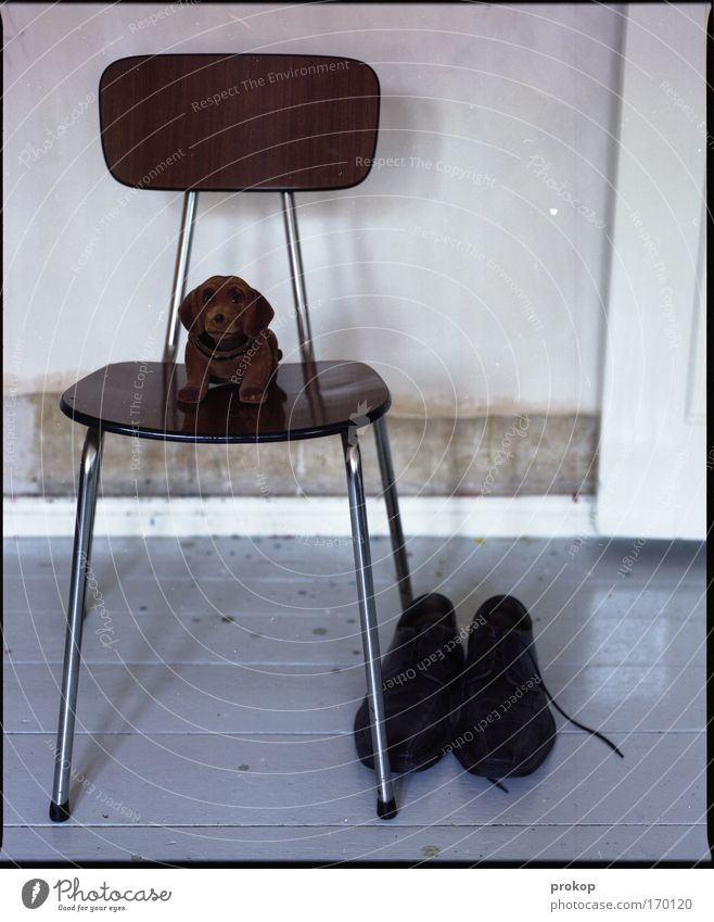 Gerhard, chair and shoes Colour photo Interior shot Deserted Day Deep depth of field Central perspective Flat (apartment) Chair Wait Virtuous Pride Bravery