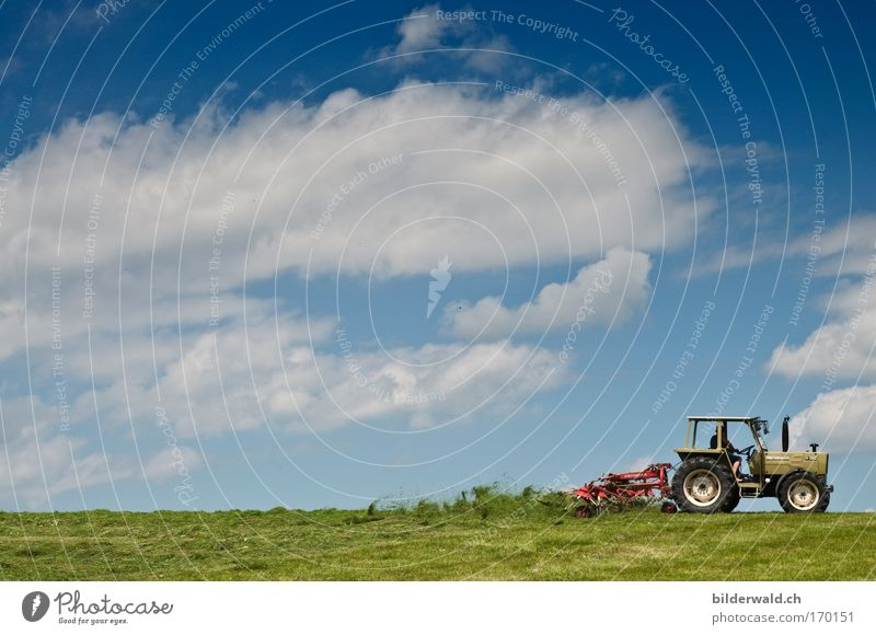 whirlwind Colour photo Exterior shot Copy Space left Copy Space top Day Silhouette Long shot Wide angle Tractor mixing tedder Nature Landscape Plant Earth Sky