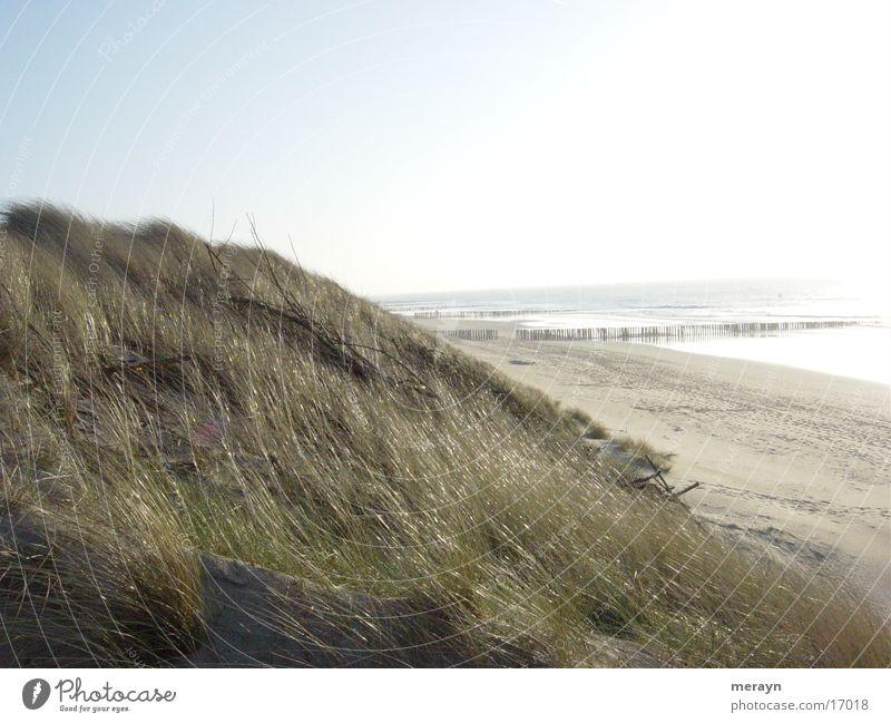 backlight Netherlands Europe Beach near Domburg