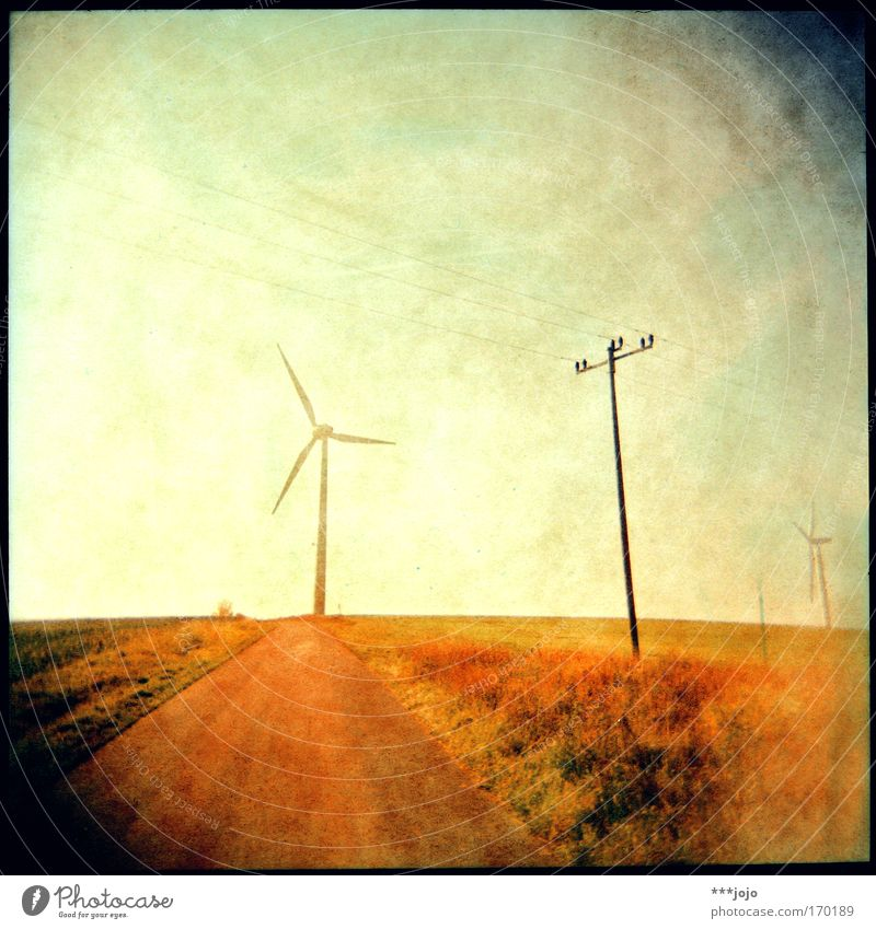 Yellow Holga Lomography Movement Lanes & trails Warmth Landscape Bright Field Wind Force Energy industry Electricity Retro Corner Hot