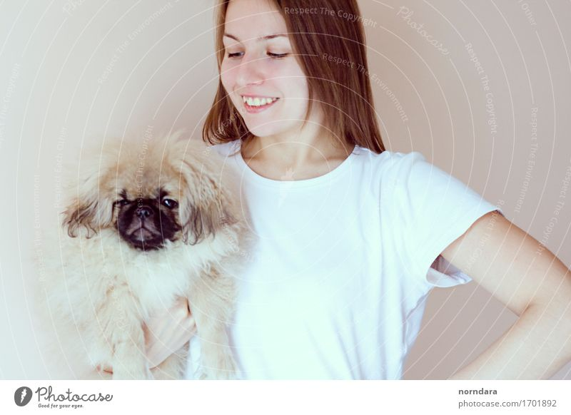 happy girl with dog Human being Dog Youth (Young adults) White Animal Joy 18 - 30 years Adults Life Love Healthy Laughter Friendship Happiness Smiling Cute