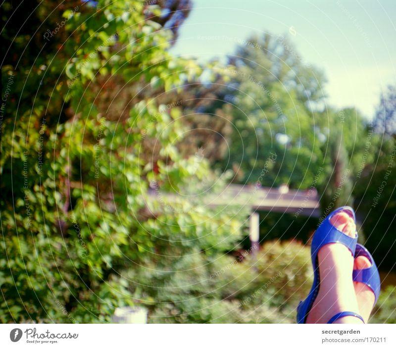 Nature Blue Green Beautiful Tree Summer Relaxation Landscape Garden Style Dream Feet Park Contentment Footwear Elegant