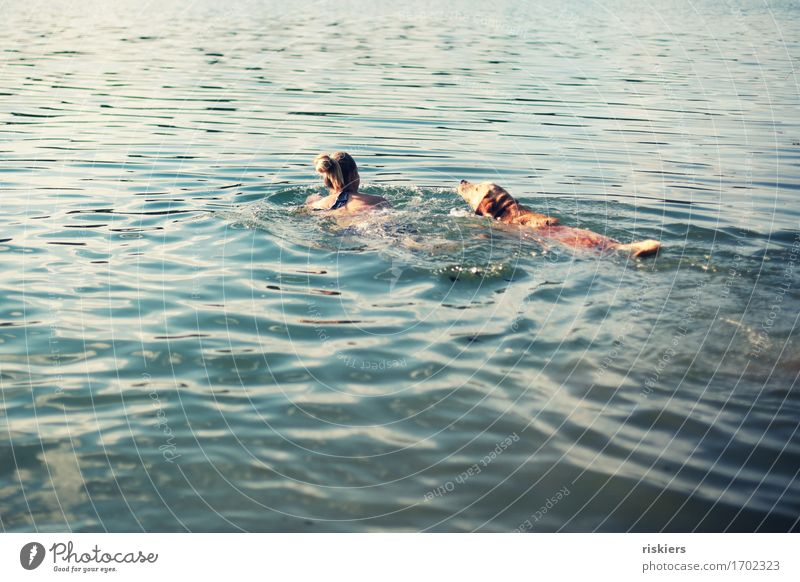just swim, swim, swim... Human being Feminine Woman Adults Friendship Life 1 30 - 45 years Summer Beautiful weather Lake Animal Pet Dog Swimming & Bathing Free