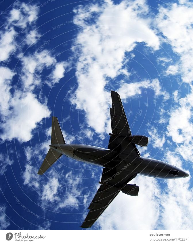 Sky Nature White Blue Vacation & Travel Clouds Black Happy Fear Airplane Flying Large Transport Tourism Aviation Threat