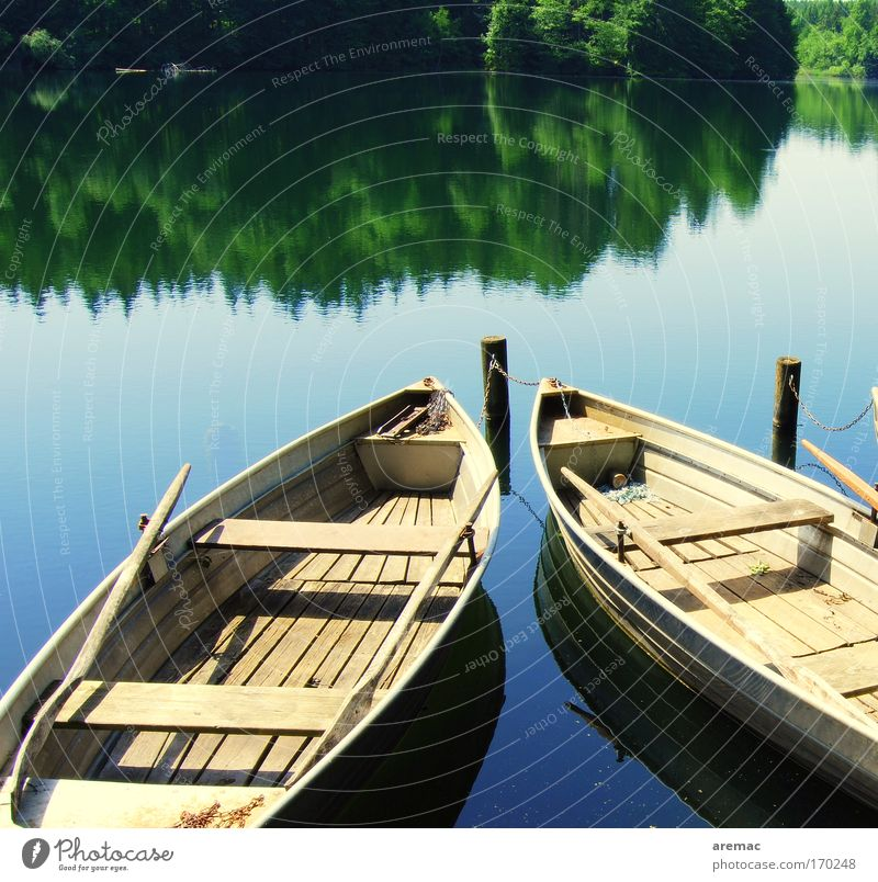 still lifes Colour photo Subdued colour Exterior shot Copy Space top Day Reflection Sunlight Relaxation Calm Fishing (Angle) Summer Forest Coast Lakeside