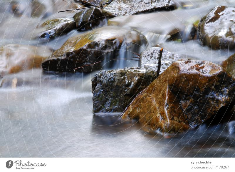 Nature Water Life Movement Stone Landscape Moody Power Coast Environment Wet Rock River Soft Pure Natural