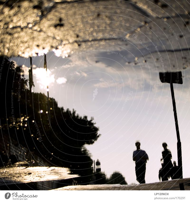 [HH 09.4/3] Puddle jogger Colour photo Exterior shot Close-up Copy Space middle Twilight Reflection Blur Shallow depth of field Leisure and hobbies Sports