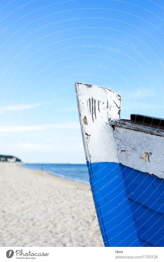 Sky Vacation & Travel Blue Summer Water Sun Landscape Ocean Beach Coast Wood Tourism Air Trip Beginning Island