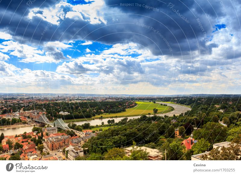 Dresden VII Shopping Vacation & Travel Tourism Trip Summer vacation Nature Landscape Sky Clouds Sun Spring Tree Park River bank Elbe Germany Europe Town